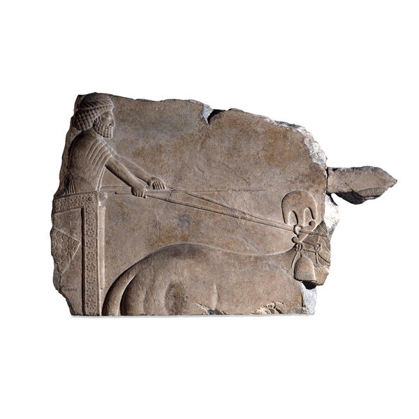 Stone relief showing a charioteer